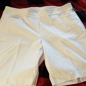 Terra Sky Bermuda shorts
